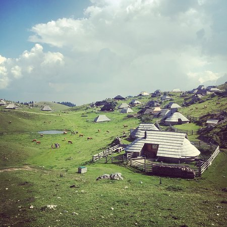 Стаховица, Словения: photo0.jpg
