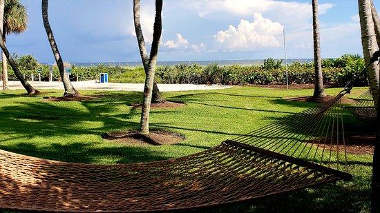 Landscape - Picture of Sanibel Island Beach Resort - Tripadvisor