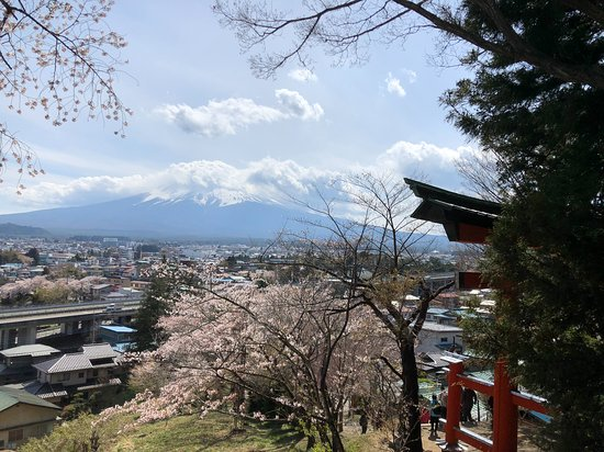 Fuji Sengen Jinja Shrine: 階段途中の鳥居から