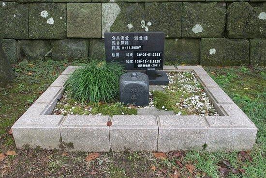 Fukui Genpyo