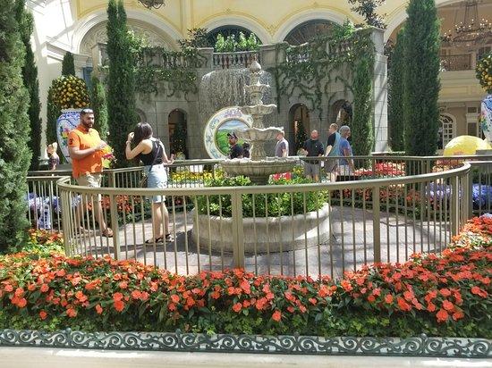 Bellagio Conservatory & Botanical Garden: 20170810_144744_large.jpg