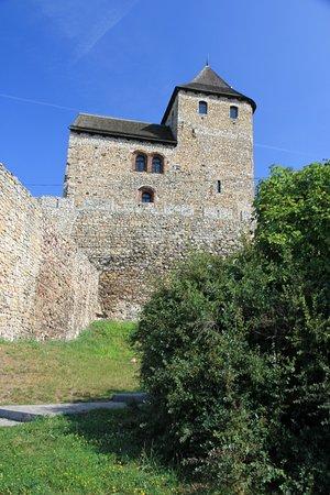 Royal Castle: Bedzin