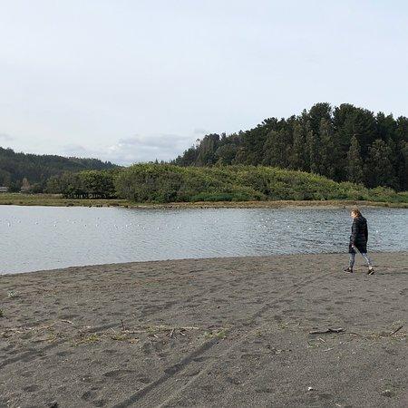 Curanipe, Chile: photo2.jpg