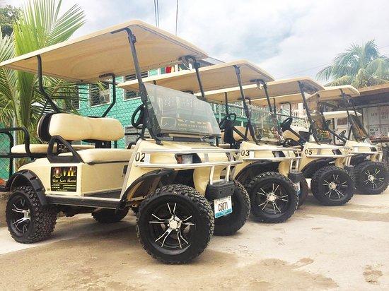 V.I.P Golf Cart Rental