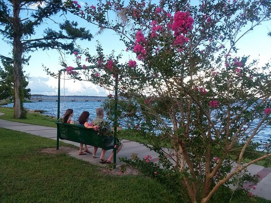 Green Cove Springs, FL: Along the St. Johns River you can enjoy  the river breeze from one of several swings in Spring P