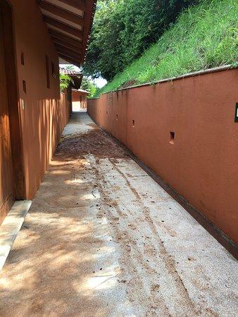 Punta Islita, Costa Rica: Mud Slide near Laurel 401