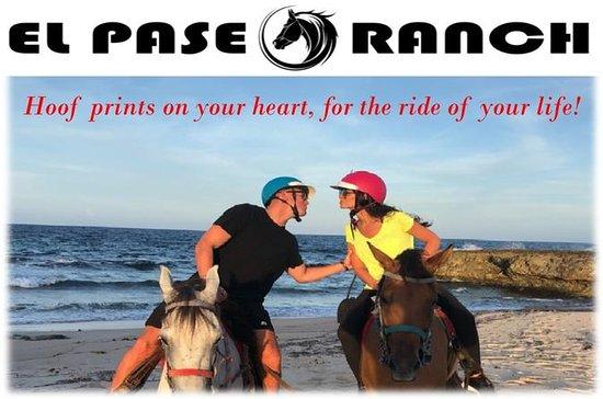 Aruba Private Horseback Riding Beach...