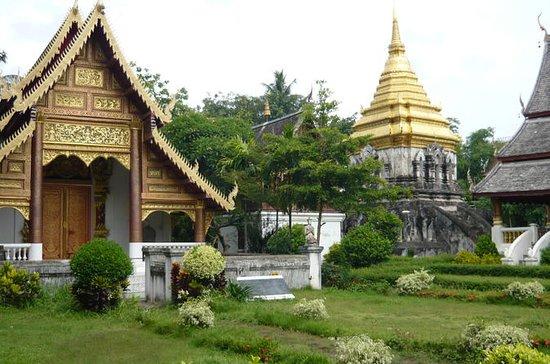 Chiangmai City og Temple Tour