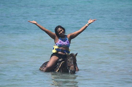 Tour a cavallo e giro di avventura a