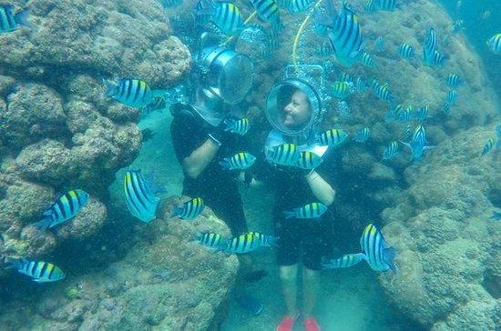 Promenade en mer sous l'eau Promenade...