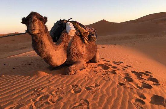 Chefchaouen de 10 dias ao Sahara a...