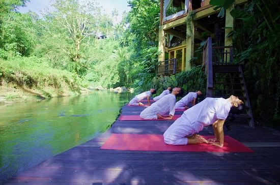 Experience Bali in Wellness and...