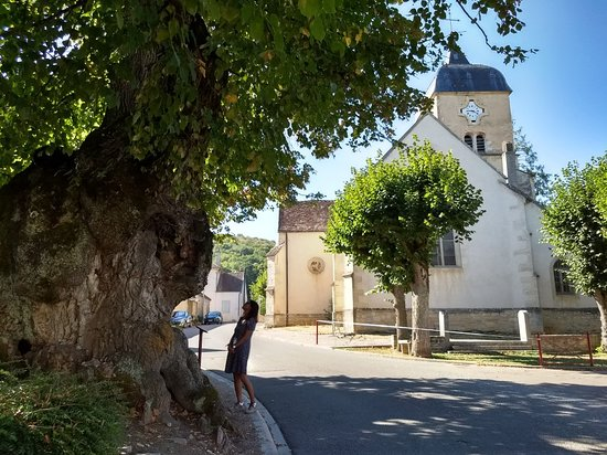 Chambolle-Musigny, France: IMG_20180917_154522675_HDR_large.jpg