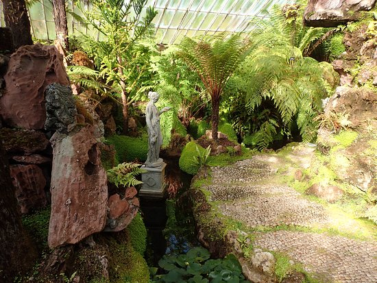 Ascog, UK: Inside the Fernery