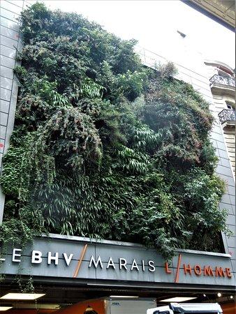 Le Mur Vegetal