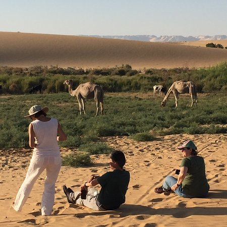 Dakhla, Egypt: photo5.jpg