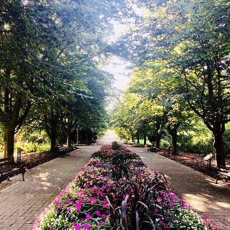 الحديقة النباتية في وارسو
