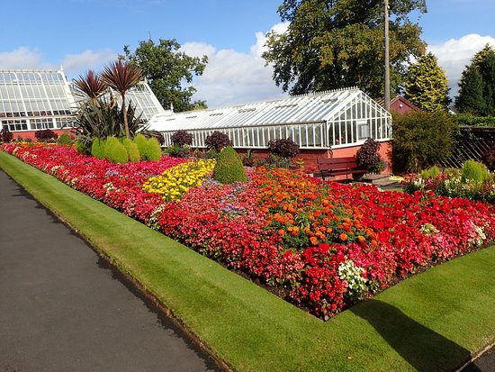 Ardencraig Gardens: The Gardens
