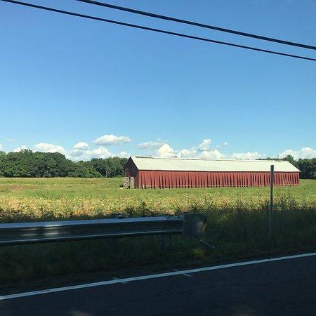 Southwick, MA: photo1.jpg