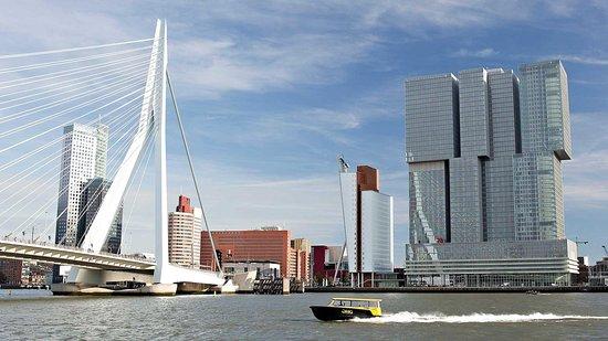 De Rotterdam Tours