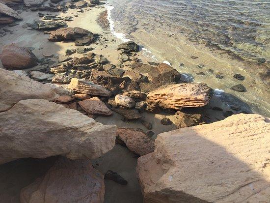 Ruwais, Emirati Arabi Uniti: Beach