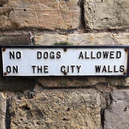約克城牆照片