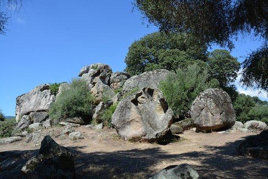 Sollacaro, فرنسا: Stenen en nog een stenen van bizarre vormen