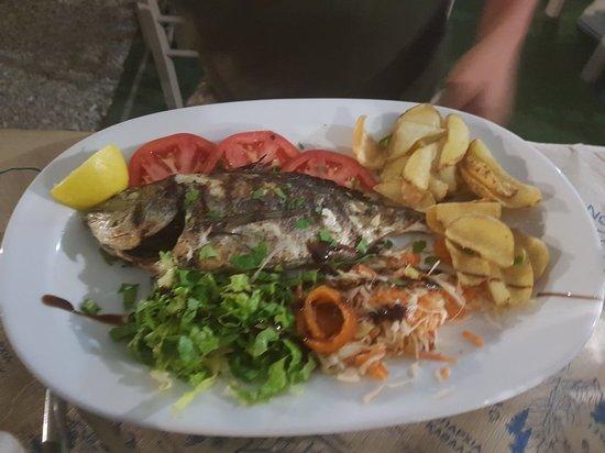 Molos Restaurant: 20180910_212532_large.jpg