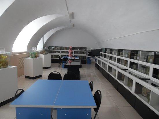 Семипалатинск, Казахстан: museum interior