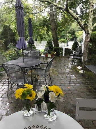East Dennis, MA: View onto the patio