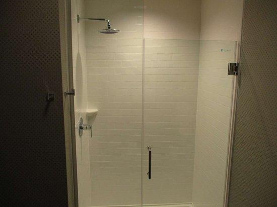 DeSoto, TX: King Guest Bathroom