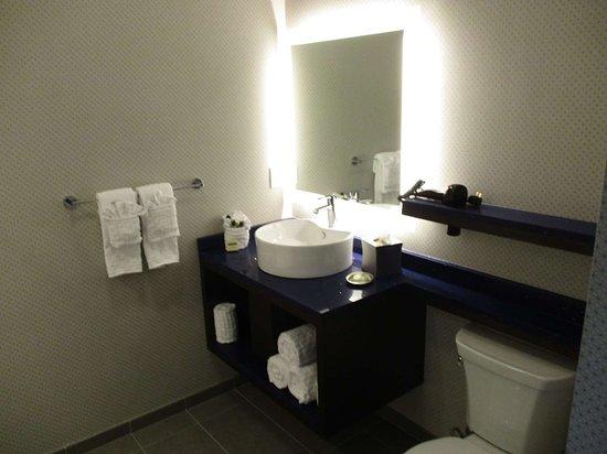 DeSoto, Техас: King Guest Bathroom