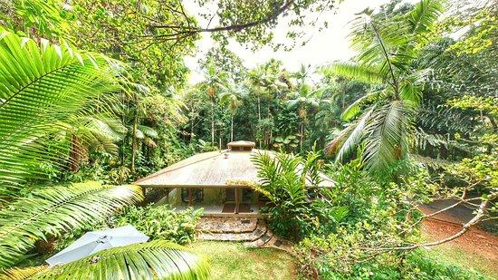 Diwan, Австралия: Deep Forest Lodge
