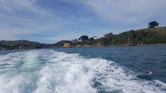 Foto de Port To Port Cruises And Wildlife Tours