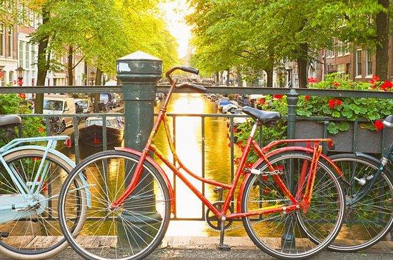 セミプライベートガイドウォーキングツアー:アムステルダムシティセンター
