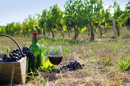 Tour privé de vin personnalisé