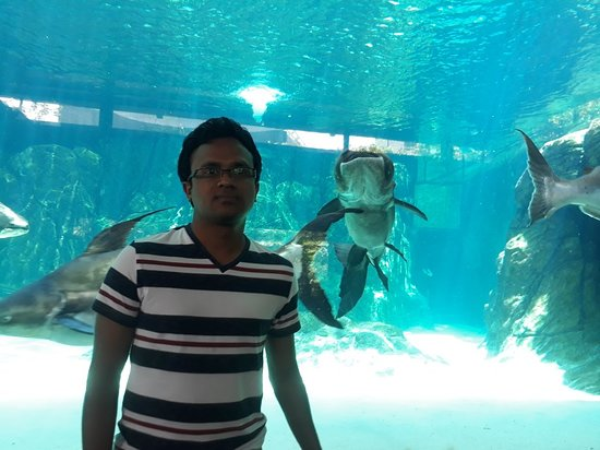 Singapore Zoo: 20180922_114234_large.jpg