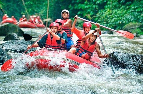 Rafting en eaux vives Ubud Area...