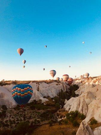 Royal Balloon Photo