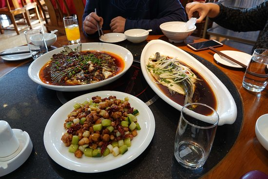 Yining, Cina: Hotel restaurant happy to cook our fresh fish from lake Sayram