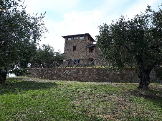 Quercegrossa, Italy: 20180919_143952_large.jpg