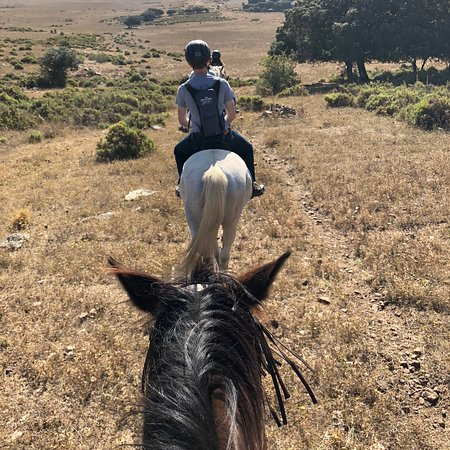 Tambor del Llano: A wonderful time at Tannie del Llano. Horseback riding, hammock swinging, the wonderful Pepe the