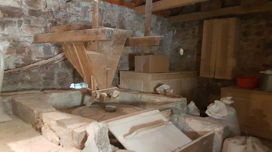 Seosko Gospodarstvo Antonicin Mlin: Old mill