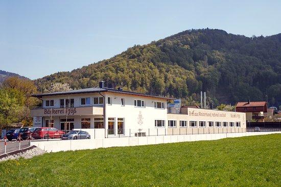 Elsbethen, النمسا: getlstd_property_photo