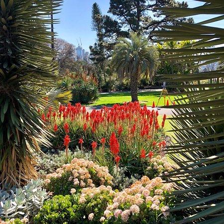 Royal Botanic Gardens Victoria: photo8.jpg