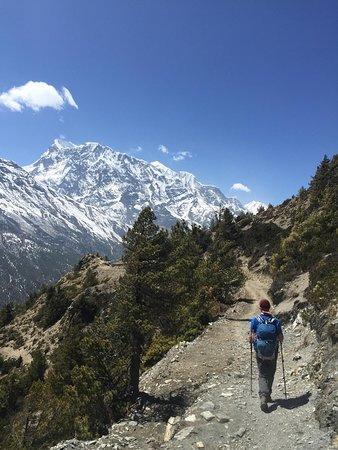 Himali Dreams