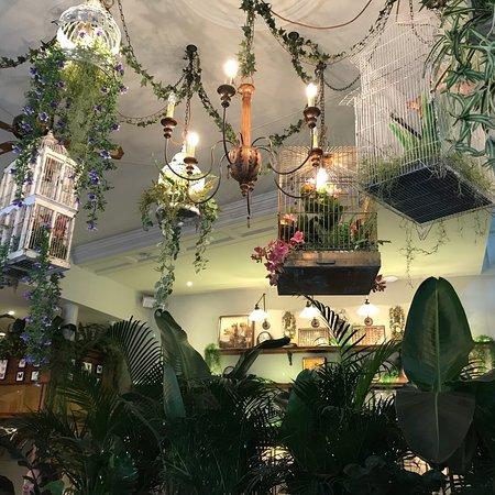 mr fogg s house of botanicals london fitzrovia restaurant reviews phone number photos tripadvisor