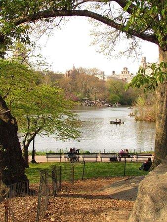 Central Park: FB_IMG_1537620023544_large.jpg