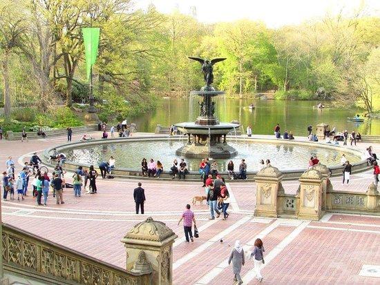 Central Park: FB_IMG_1537619981313_large.jpg
