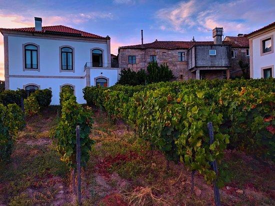 Alijo, Portugal: Fotor_153755429308499_large.jpg